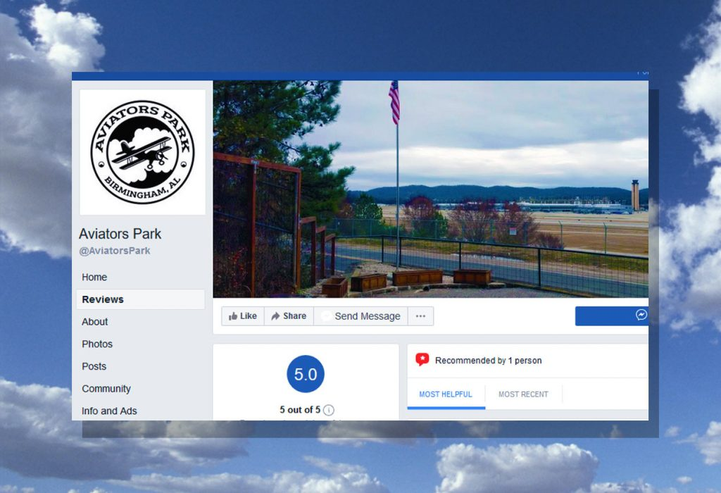 Branding and Logo Design for Aviators Park